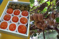 国城観光農園の富有柿とキウイフルーツの詰め合わせ