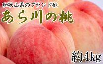 【産直】和歌山のブランド桃「あら川の桃」約4kg・秀品【2022年度発送】