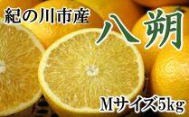 【厳選】和歌山紀の川の八朔約5kg(Mサイズ・秀品)