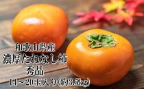 【紀の川市特産品】濃厚たねなし柿 秀品 14~20玉(たっぷり約3.5kg)