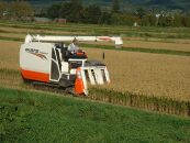 特別栽培米JGAP認証農場 令和2年産北海道産ゆめぴりか5kg