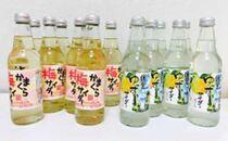 鎌倉酒販協同組合「かまくら梅サイダー8本、鎌倉ゆずサイダー8本 計16本」