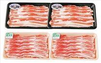 B-2011 鹿児島黒豚・茶美豚食べ比べセット