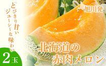 旭川発!北海道の赤肉メロン2玉(1玉標準1.3kg以上)
