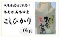 <令和2年産>美馬市産 コシヒカリ精米10kg