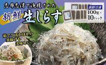 志布志湾のめぐみ 冷凍生しらす 10パック