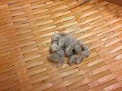 希少な純国産固有種、和綿の種