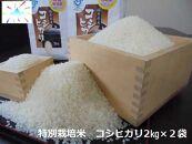 あわら市産コシヒカリ特別栽培米(2kg×2)