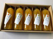 旬の柑橘 みかん・きよみジュースの詰め合わせ