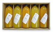 旬の柑橘贅沢しぼりジュースの詰め合わせ5本セット