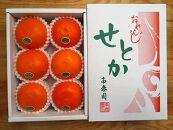 【先行受付・限定40箱】ハーフ化粧箱『柑橘の大トロ』ハウスせとか厳選6玉入