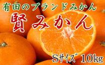有田のブランドみかん「賢みかん」10kg(Sサイズ・赤秀品)