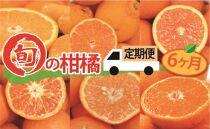 【全6か月定期便】旬の柑橘類コース