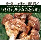 希少な国産松茸「高野松茸」200g 香り・歯応え・味ともに最高級!【化粧箱入】
