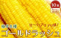 【先行予約】極早生ゴールドラッシュ10本(7月下旬より順次発送)