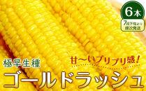 【先行予約】極早生ゴールドラッシュ6本(7月下旬より順次発送)