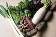 加賀野菜セット