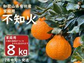 【先行予約】山城農園の旨味が詰まった有田の不知火 家庭用約8kg/ORYY推奨商品