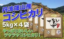 お米のおいしさ伝えたい!丹波篠山産コシヒカリ5kg×4