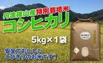 お米のおいしさ伝えたい!特別栽培米コシヒカリ5kg×1