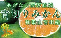 爽やかな味わい青切りみかん約10kg初秋の味覚《有機質肥料100%》