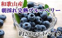 和歌山の朝採れ完熟ブルーベリー約800g(約200g×4パック)
