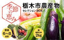 季節の恵み栃木市農産物セレクションBOX①