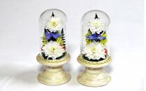 本物のキクの花を加工したボトルフラワー【お悔やみの贈り物ギフトに・ご自宅用に】