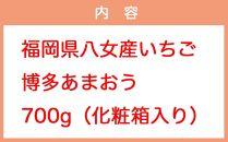 【先行受付】JAふくおか八女・博多あまおう700g(化粧箱)