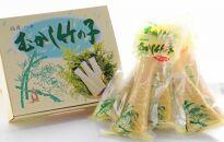 むかし竹の子 250g×5本セット【新物5月1日より発送】