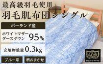 ポーランド産ホワイトマザーグースダウン95%の最高級羽毛(0.3㎏)使用 羽毛肌布団シングル(ブルー系/柄お任せ)