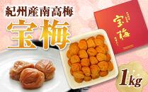 メディア掲載多数経験!紀州産南高梅宝梅1kg