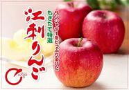 江刺りんご サンふじ3kg(8~10玉)【150個限定・11月20日までの受付】ブランドフルーツ厳選