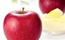 江刺りんごジュースりんごの滴(パウチタイプ)江刺産サンふじ、王林使用 195ml×24個ストレート果汁100%