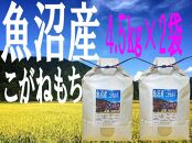 「魚沼産こがねもち」もち米精米4.5㎏×2袋