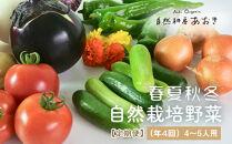 【定期便】春夏秋冬自然栽培野菜セット(年4回)4~5人用