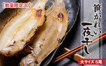 【数量限定30】笹かれい一夜干し(ササカレイ、ヤナギムシカレイ)大サイズ5尾セット