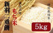 【ギフト用】新羽二重餅【もち米】5kg