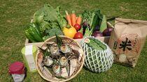 【ギフト用】旬の野菜12種+果物・お米など詰合せDセット