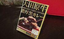 〈お試し〉大田原牛で作った濃厚レトルトカレー!大田原牛100%黒カレー 1パック