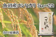 【厳選☆十日町育ち】魚沼産コシヒカリ 5㎏×2袋