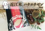 ◆農家直送滋賀県高島市産近江米ハナエチゼン5kg×1袋精米済