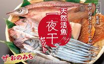 「ザ、おのみち」天然活魚一夜干セット