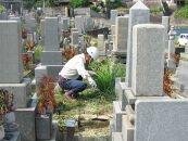 ★墓掃除 Cプラン