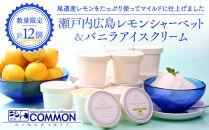 【数量限定】瀬戸内広島レモンシャーベット&バニラアイスクリームセットM