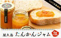 【ギフト用】屋久島たんかんジャム6個セット