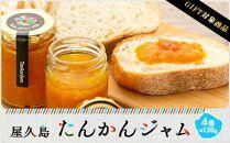 【ギフト用】屋久島たんかんジャム4個セット