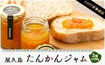 【ギフト用】屋久島たんかんジャム3個セット