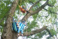 【神鍋高原】ロープで木登りツリーイング4名無料券