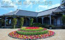 長崎県JALふるさとクーポン147000&ふるさと納税宿泊クーポン3000